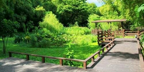 小琉球旅遊推薦竹林生態濕地公園