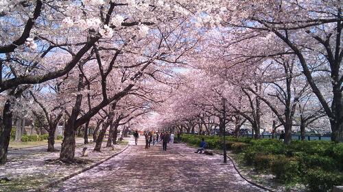 大阪景點推薦日本造幣局