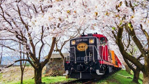 京都自由行推薦嵐山小火車