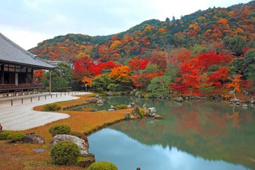 京都自由行景點推薦天龍寺