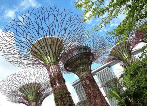 新加坡景點推薦濱海灣花園