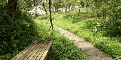 宜蘭旅遊景點推薦仁山植物園