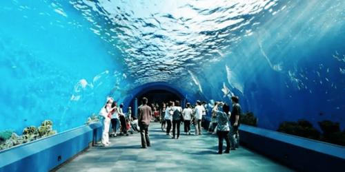 曼谷旅遊景點推薦暹羅海洋世界