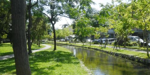 高雄旅遊推薦大東濕地公園