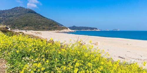 馬祖旅遊推薦坂里沙灘