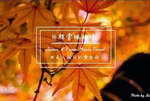 【日韓紅葉情報】-走進『韓國/日本』賞楓秘境