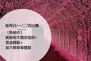 【韓國冬日慶典】晨靜樹木園夜燈節+雪盆&草莓體驗