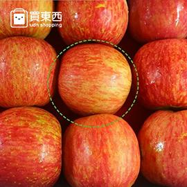 【彩水果】天然果粉無蠟脆蜜小蘋果 12顆
