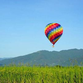 【2020台東熱氣球嘉年華】鹿野高台、花蓮東大門熱血二日遊